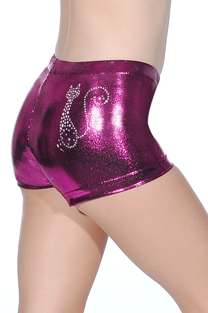 Shiny Nylon/Lycra Hipster Shorts with Cat Motif